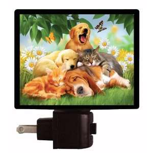 Pet Night Light   Sleepy Heads   LED NIGHT LIGHT