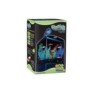 TETRA GLOFISH AQUARIUM KIT, Size 1.5 GALLON (Catalog