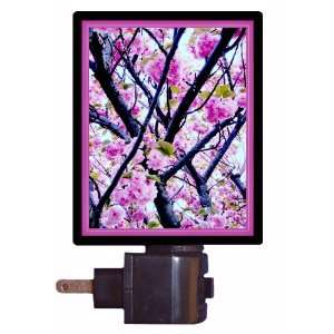 Floral / Flower Night Light   Cherry Blossoms   LED NIGHT